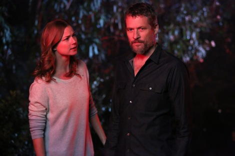 """Emily Van Camp and James Tupper star as father-daughter in ABC's """"Revenge."""" Image courtesy of revengeabc.wikia.com"""